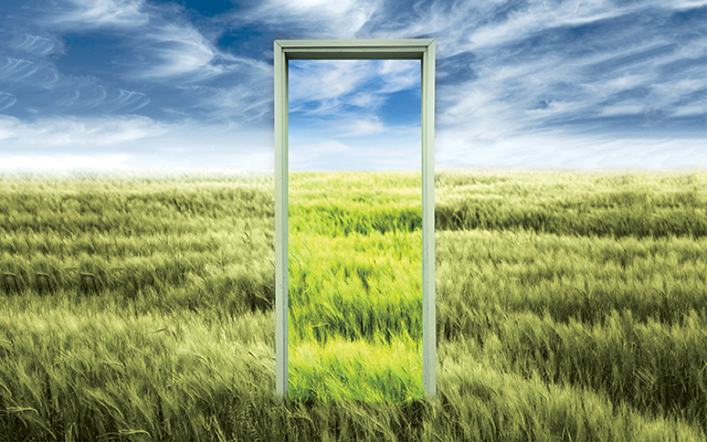 A Picture Of An Empty Door Frame Situated In A Field Of Grass